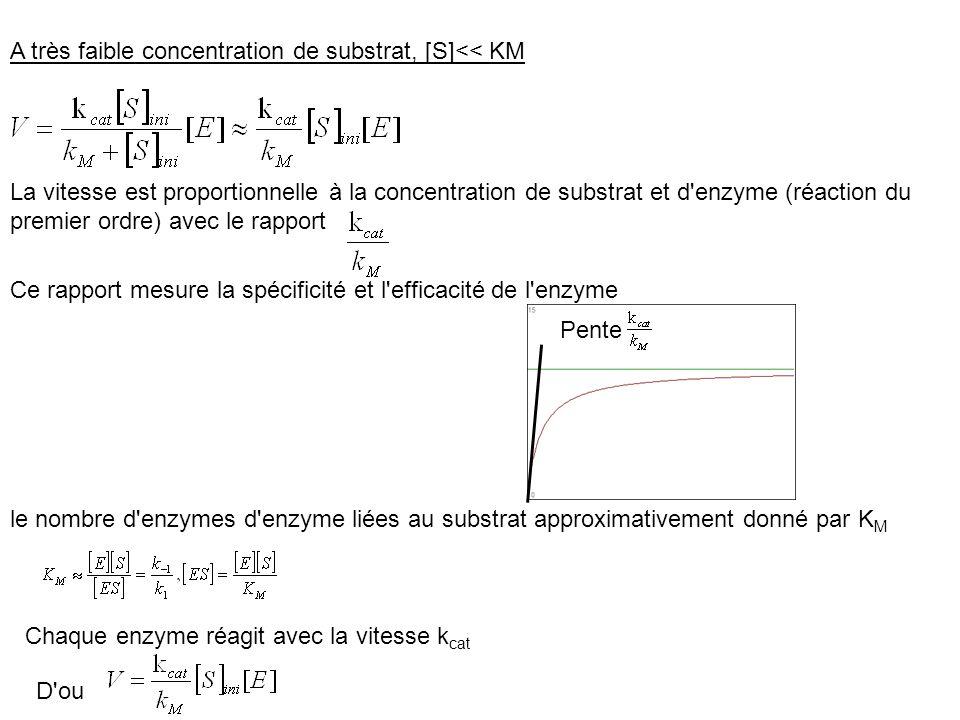 A très faible concentration de substrat, [S]<< KM